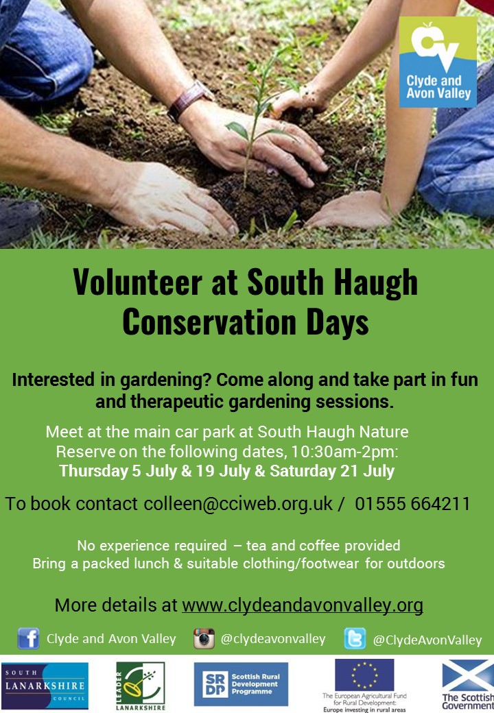 Volunteer at South Haugh Conservation Days