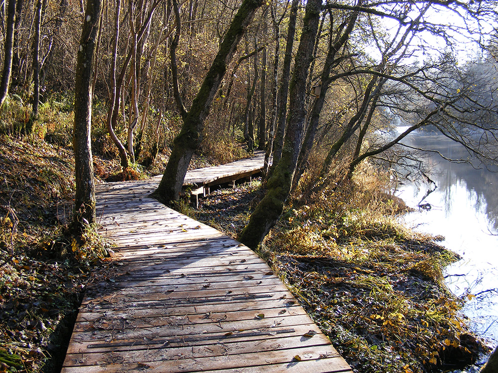 The boardwalk at Falls of Clyde