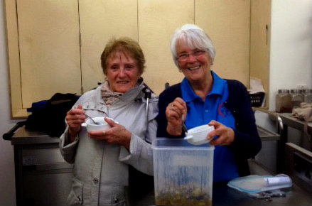 Participants enjoy Roman pork stew made in May 'Tasting Through Time' workshops