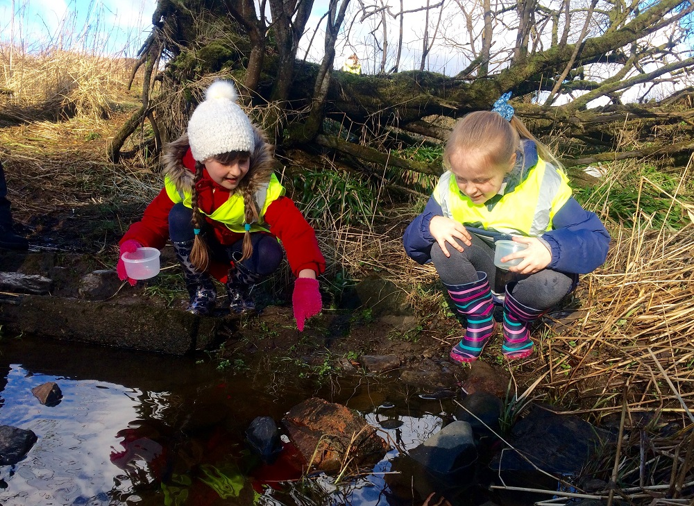 P4 pupils of Newfield Primary School say farewell to their brown trout fry, Clyde River  Foundation