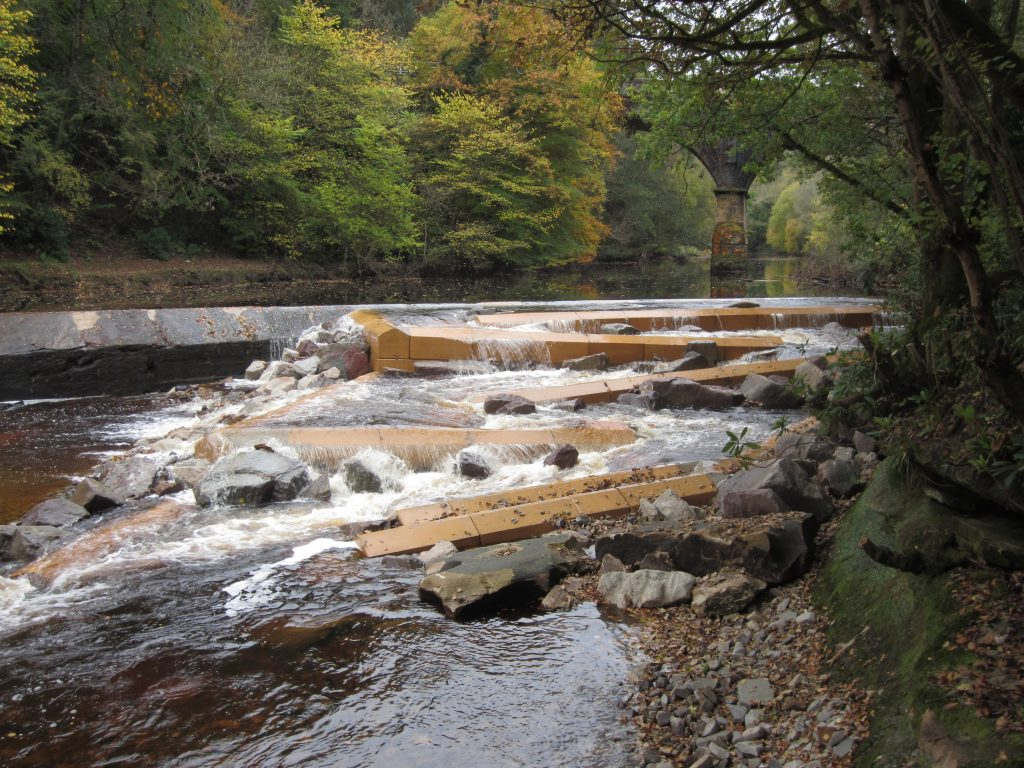 The completed fish pass at Ferniegair Weir, Larkhall, Rivers and Fisheries Trust Scotland