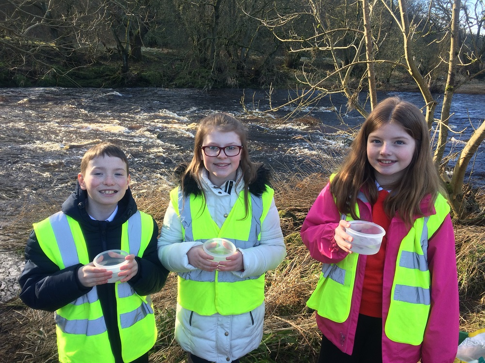 P4 pupils from Blackwood Primary School get ready to release the brown trout fry into the Avon Water