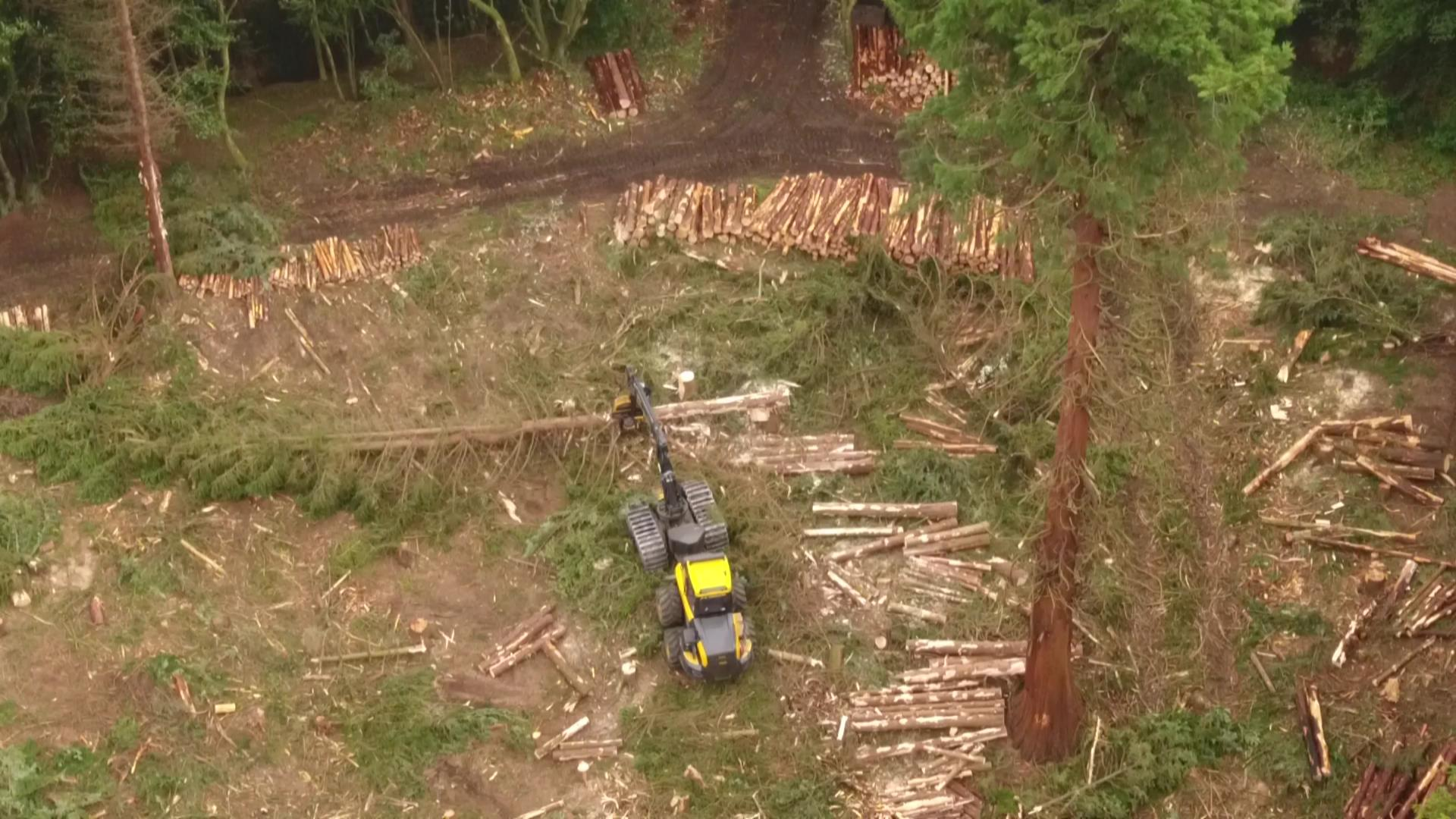 The forestry harvesters were designed specially to cope with steep terrain, courtesy of  Bjorn Aern, Drone Scotland, www.dronescotland.com