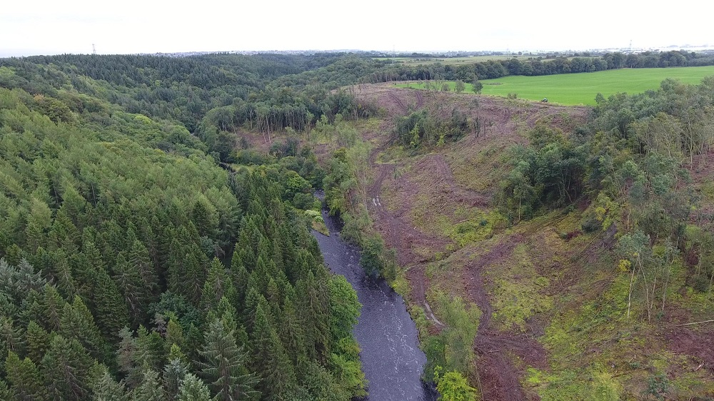 18 hectares of plantation conifers were removed from the Country Park in 2016, courtesy of  Bjorn Aern, Drone Scotland, www.dronescotland.com