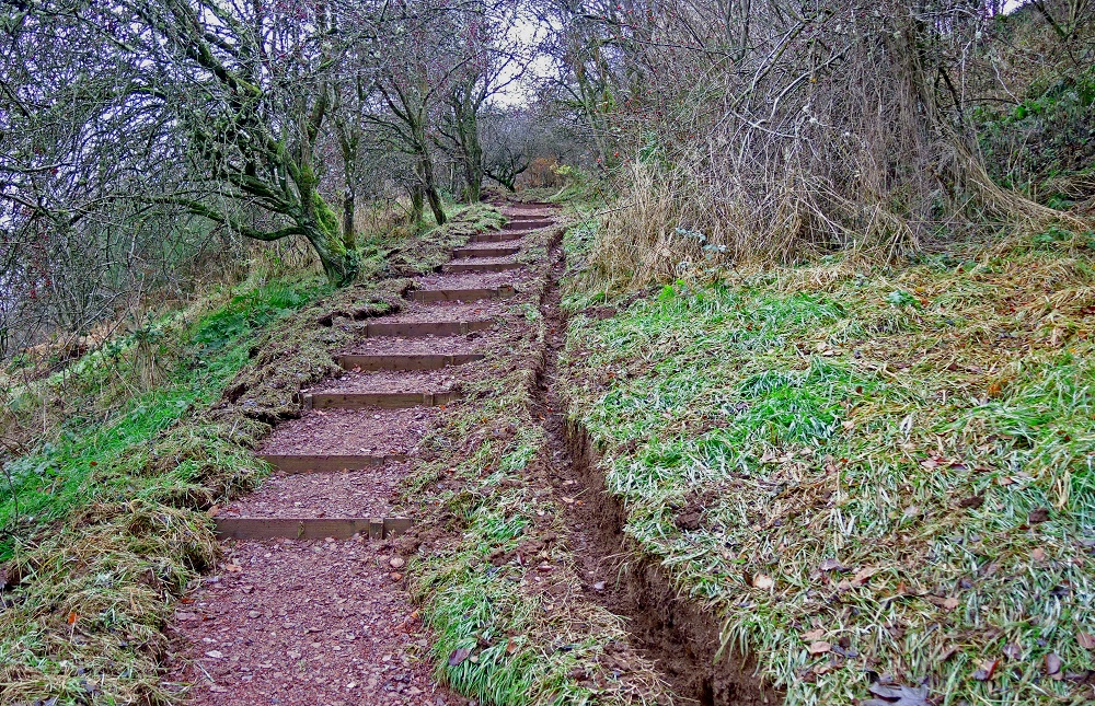 The previously steep and muddy slope has been turned into an easily traversed and enjoyable path for users