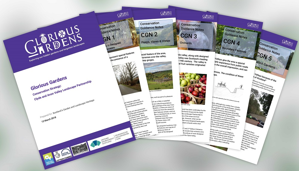 The Conservation Strategy and Guidance Notes