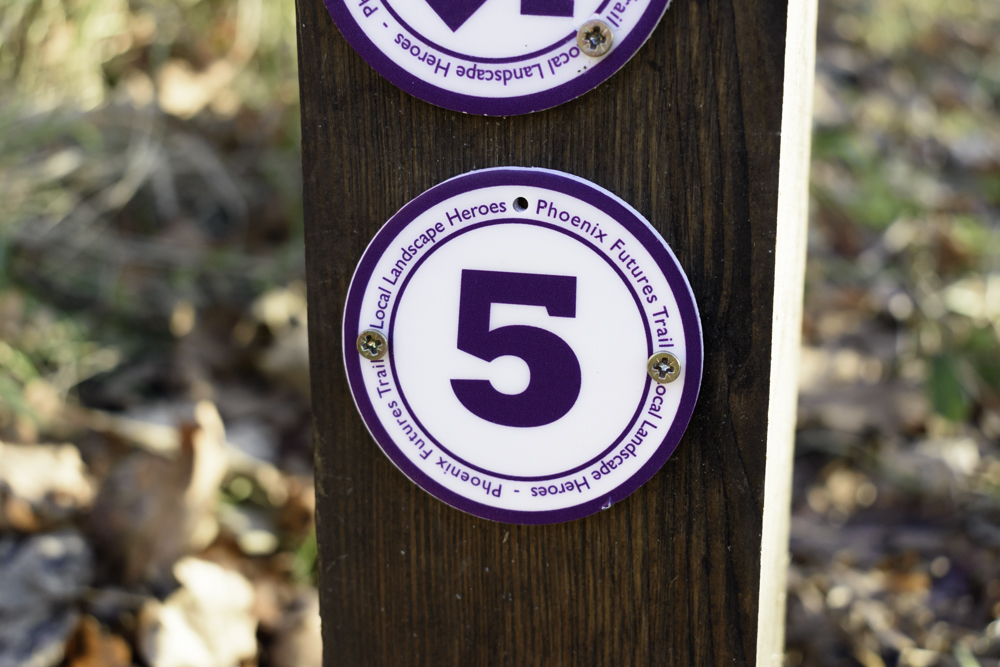 Follow the purple Local Landscape Heroes Phoenix Futures trail waymarkers along the route