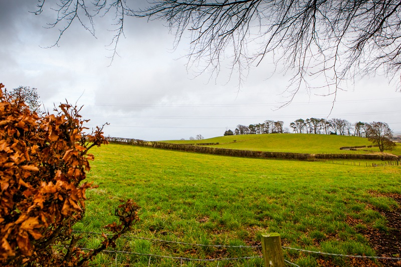 Enjoy the rolling Avon Valley landscape beside blackthron hedgerows following the trails in Glassford, South Lanarkshire