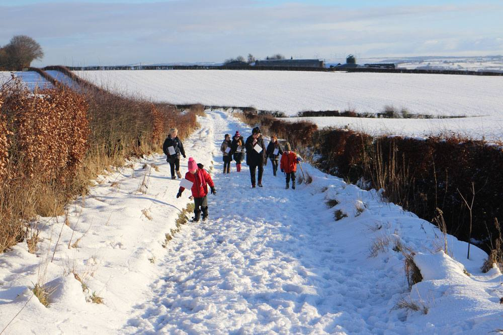 Quarter Primary School pupils show us that local routes into Chatelherault Country Park are beautiful no matter what the weather