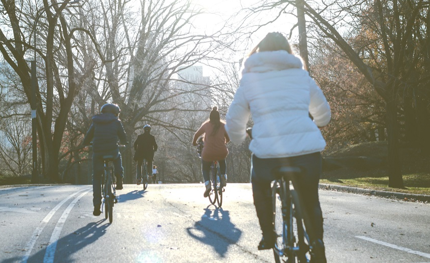 A selection of walking and cycling activities are taking place in and around Chatelherault Country Park between now and April, as part of teh Make Your Way project