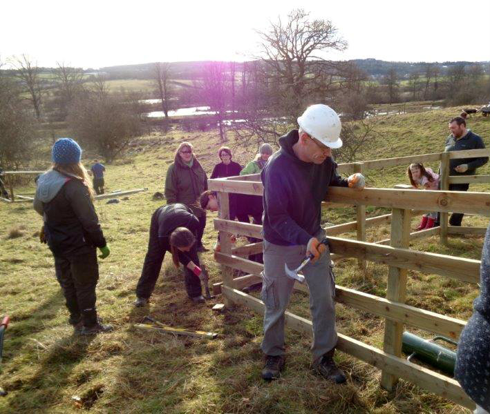 40 volunteers helped replant of an area of ancient parkland and tree lined avenues leading from the stately home of Dalzell House to the River Clyde at RSPB Scotland Baron's Haugh.