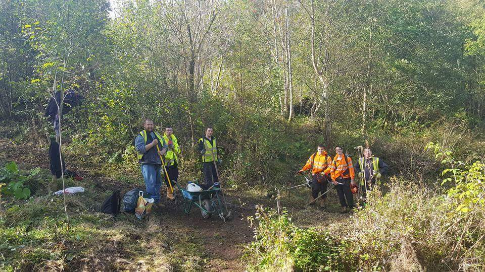 Volunteers at work in the Stonehouse Park woodland