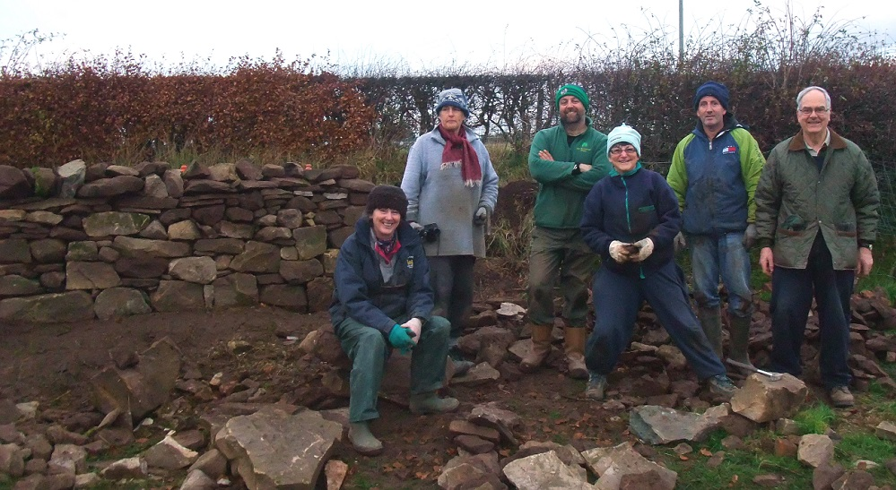 Ruth undertaking some drystane dyking with Clydesdale Community Initiatives