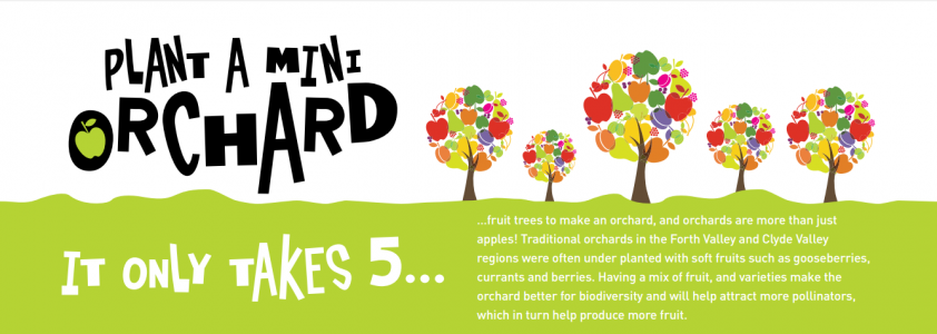Central Scotland Green Network Trust's Plant a Mini Orchard 2015/16 Campaign, which saw 60 schools in the Clyde and Avon Valley and Inner Forth areas plant and look after an orchard in their school grounds.