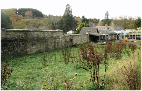 The Walled Garden, looking towards the Courtyard Stables and the Wellingtonia at the site of Carfin House, SGLH, 2016