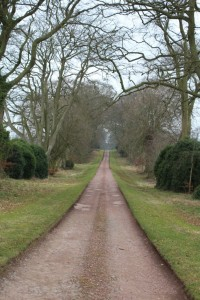 The Avenue at Cleghorn today