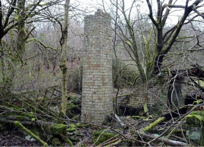 The remains of glasshouses in the garden - the chimney is part of the heating system