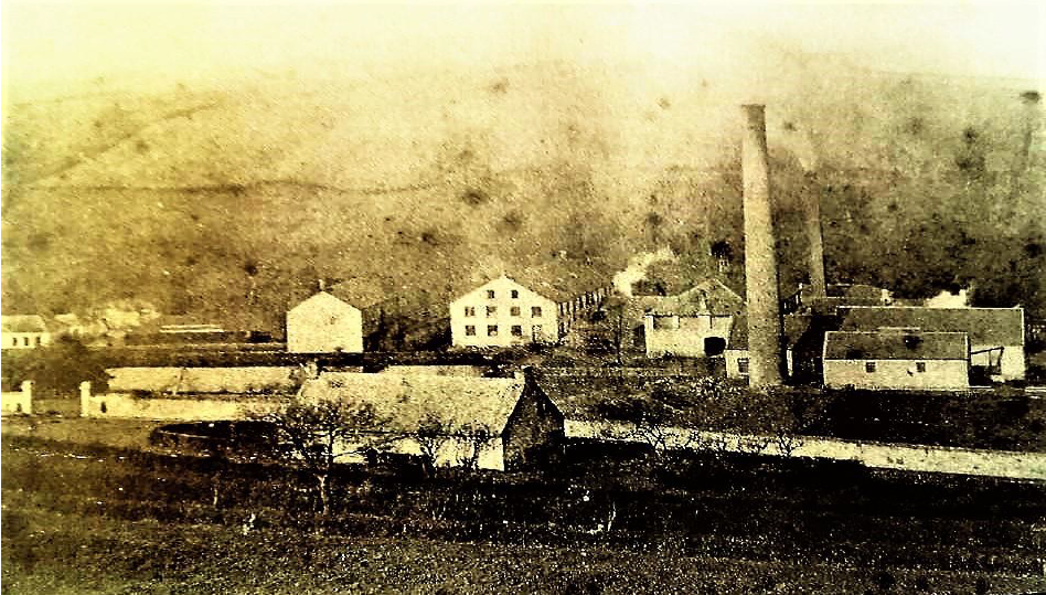 Bleachfield Dyeworks