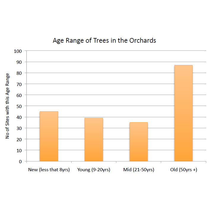 Age Range Of Trees In Orchards