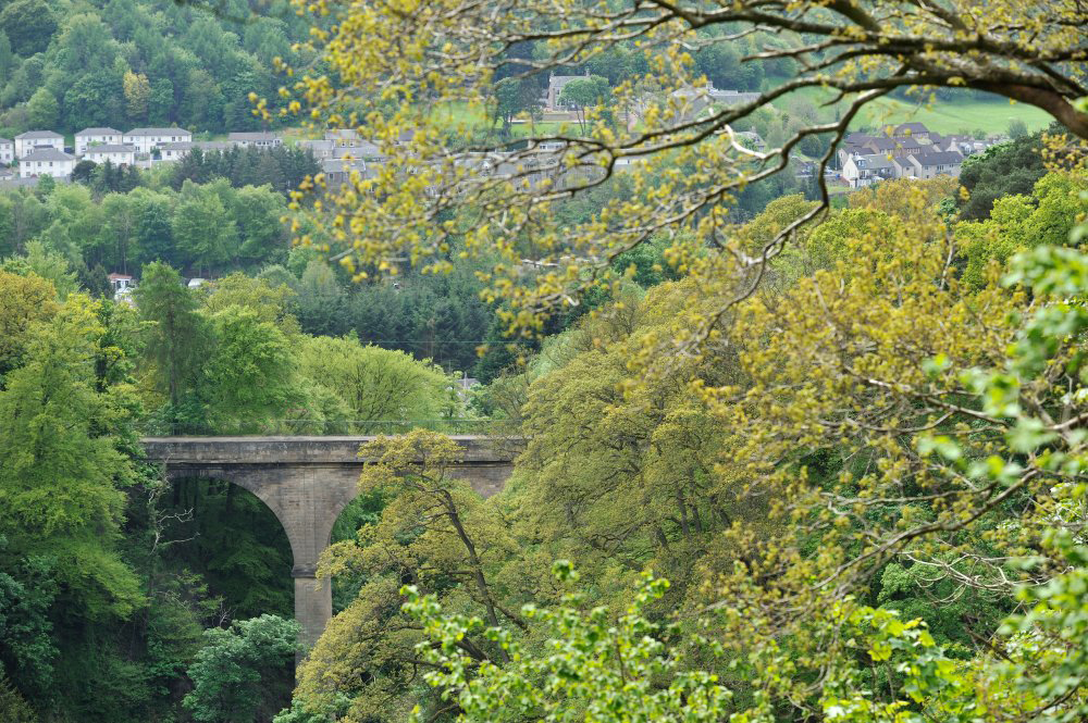 Views of Thomas Telford's Bridge and the Mouse Water are clearest in Cartland Craigs when the trees are bare in winter