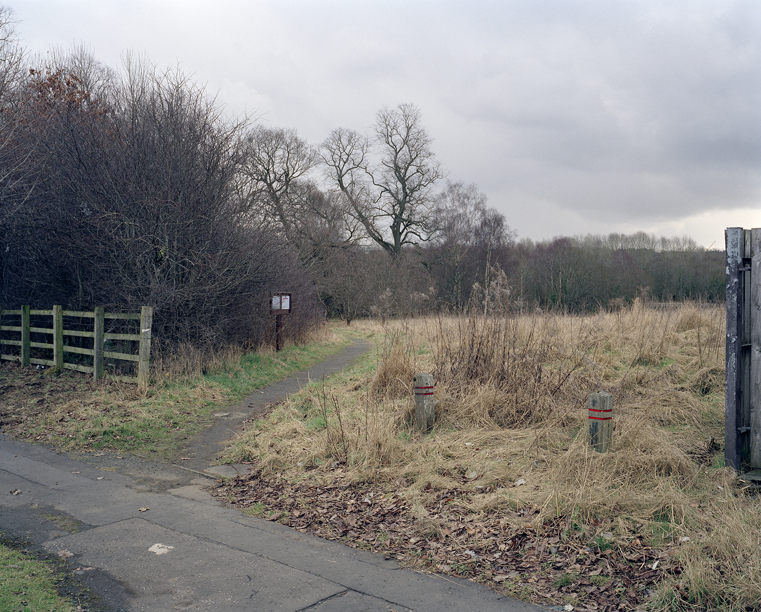 1. Start in Hamilton by the roundabout and Motherwell Road, take the footpath through South Haugh.