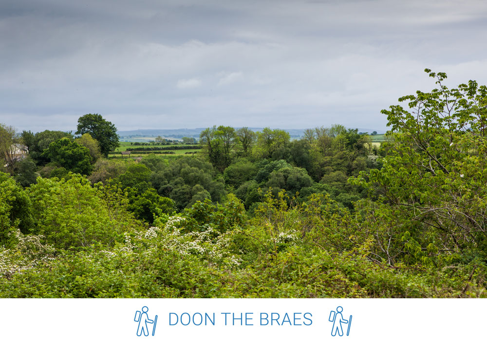5. Take in the views across the valley as you head to the end of the Braes and Avon Road.
