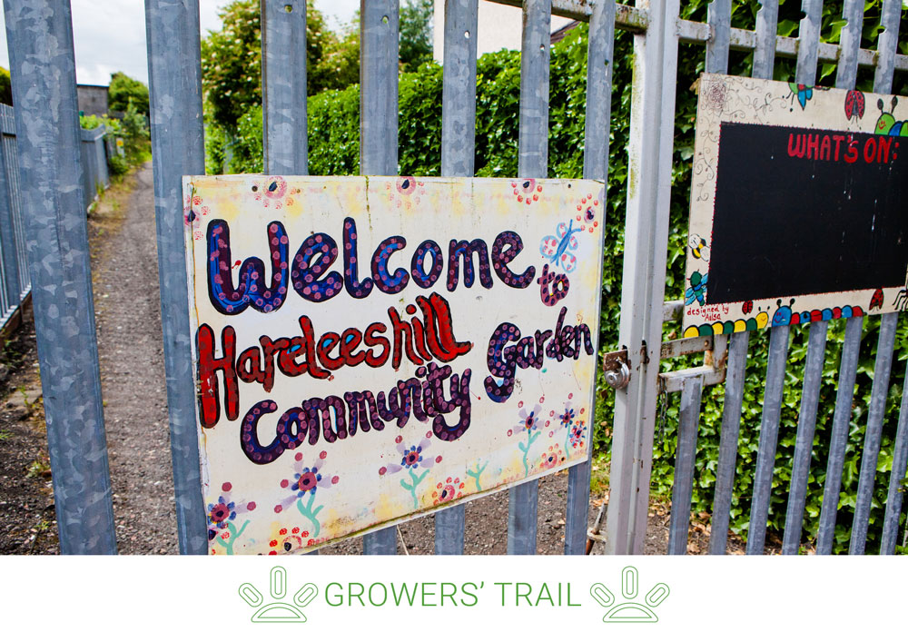 7. Keep going on Margaret's Place then John Street. Take a right along Wilson Street to find the Larkhall Community Growers.