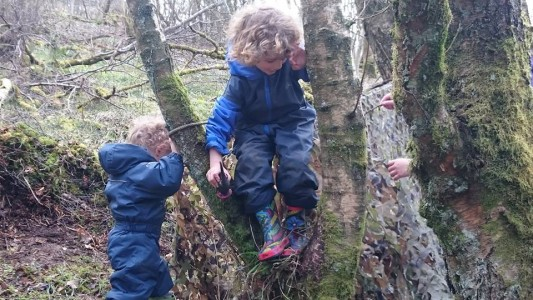 Growing Up Wild - Summer 2017 - RSPB Baron's Haugh