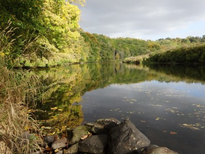 Shaping the Landscape: Clyde Walkway - Garrion Burn to Mauldslie Bridge