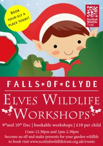 Elves Wildlife Workshops