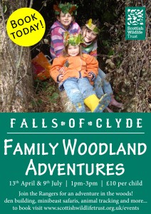 #CAVWChallenge: Family Woodland Adventures