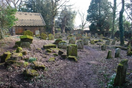 Conservation volunteering at St Pat's Graveyard