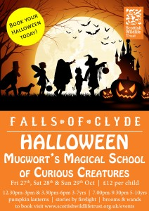 Halloween - Mugwort's Magical School of Curious Creatures (5-10yrs)