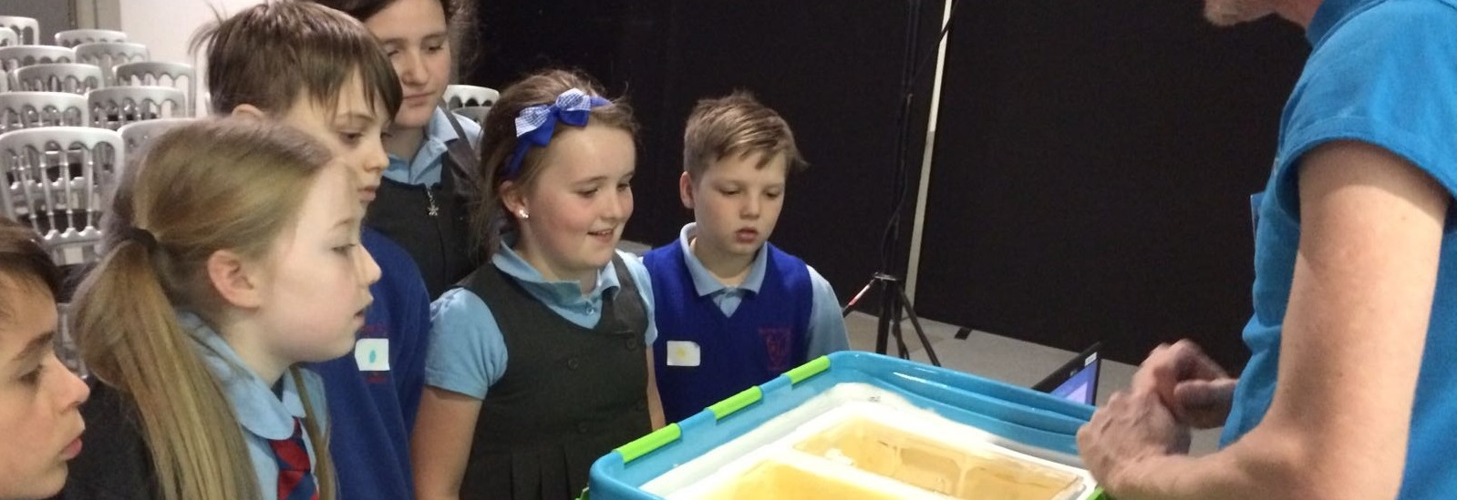 Hundreds of school children join Avon Water Salmon Science Project