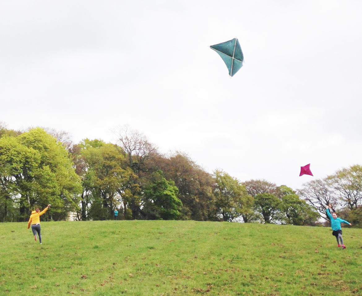 Do you fly a kite education resource